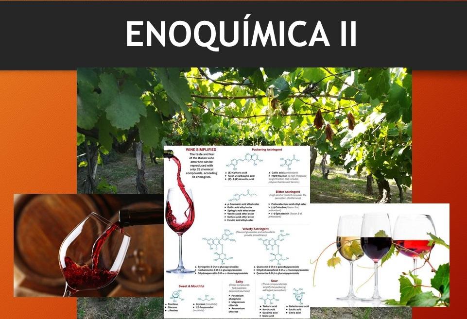 imagen portada Enoqca II_2020